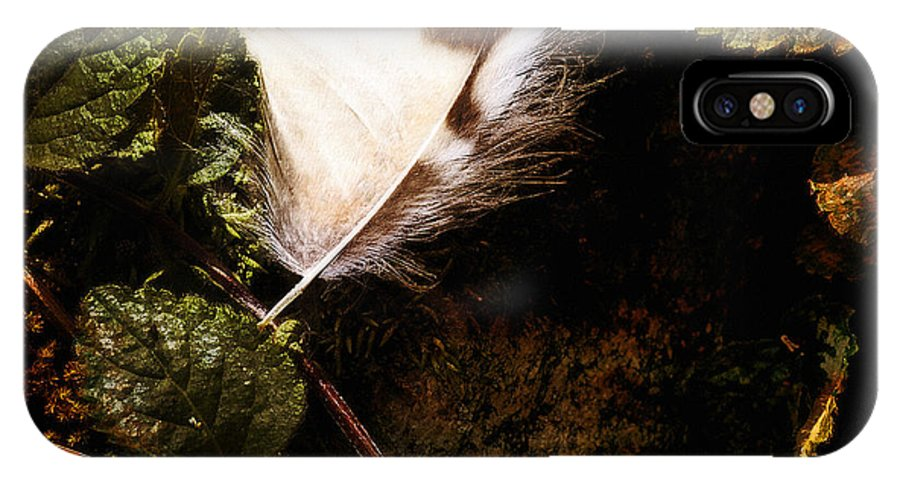 Lee Craig IPhone X Case featuring the photograph Owl Feather On Natures Canvas In Square by Lee Craig