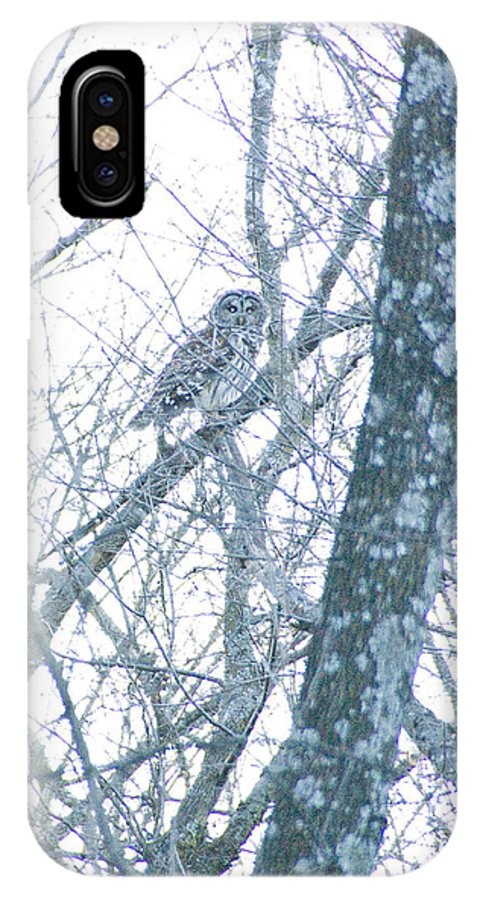 Great Blue Heron Photographs IPhone X Case featuring the photograph Owl II by Vernis Maxwell