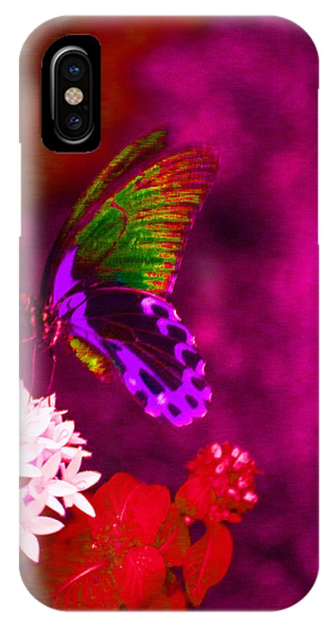 Sketch Of A Butterfly IPhone X Case featuring the photograph Painted Buterfly by Melvin Busch
