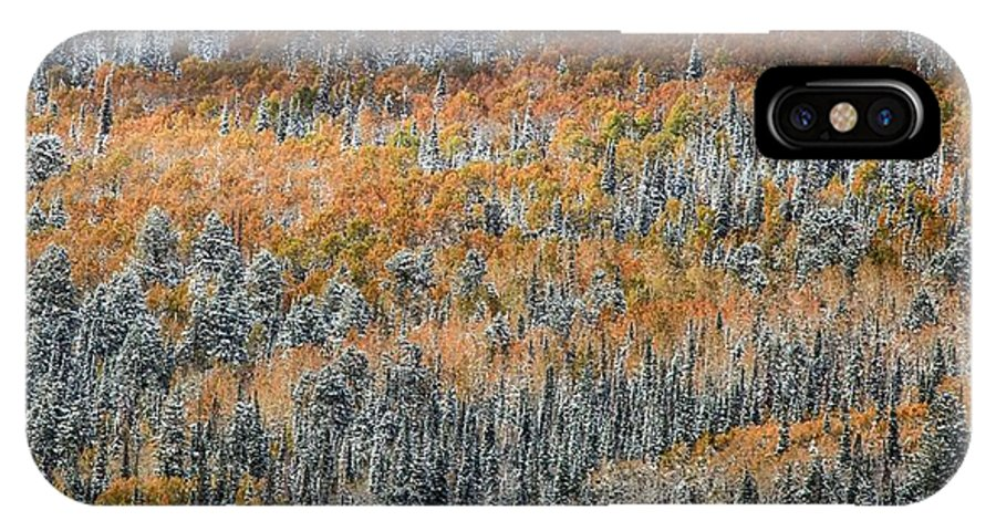 Panorama IPhone X Case featuring the photograph Painted In Orange by Mitch Johanson