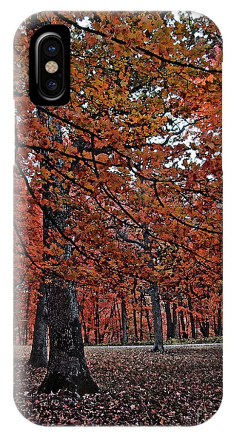 Autumn IPhone X Case featuring the photograph Painterly Style Autumn Trees by Minding My Visions by Adri and Ray
