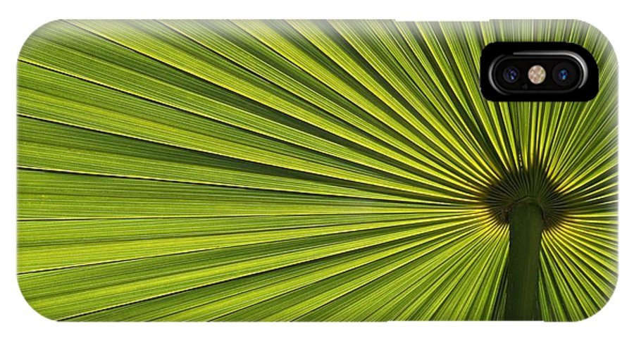 Green IPhone X Case featuring the photograph Palm Fron Abstract by Sabrina L Ryan