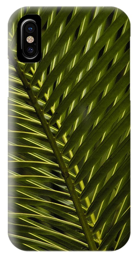 Abstract IPhone X Case featuring the photograph Palm Frond Patterns by Nancy Myer
