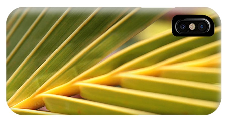 Aloha IPhone X Case featuring the photograph Palm Fronds by Sharon Mau