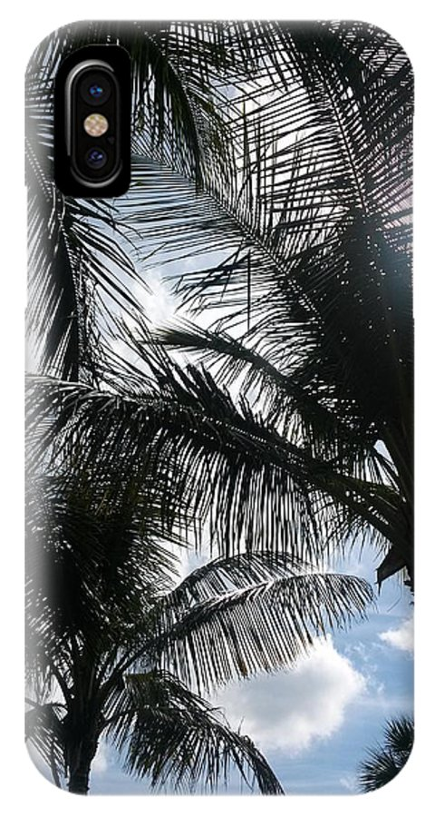 Palm Trees IPhone X Case featuring the photograph Palms In Stuart by Tiffney Heaning