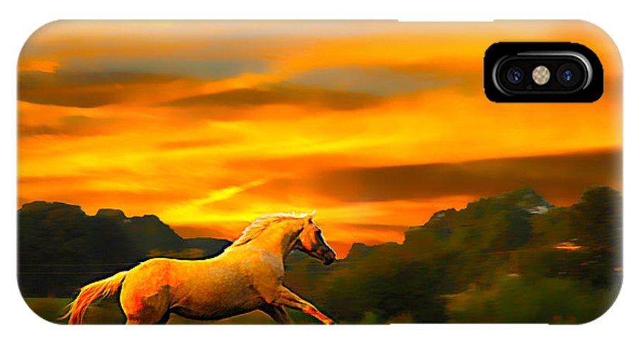 Palomino Running IPhone X / XS Case featuring the photograph Palomino Pal At Sundown by Randall Branham