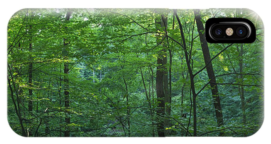 Non Urban Scene IPhone X Case featuring the photograph Panoramic Shot With Green Trees by Peter Essick