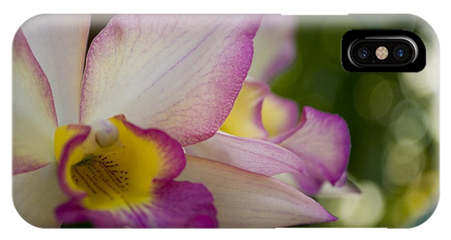 Orchid IPhone X Case featuring the photograph Paradise by Breanna Calkins