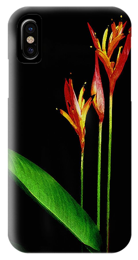 Hawaii Iphone Cases IPhone X Case featuring the photograph Parrots Beak Heliconia by James Temple