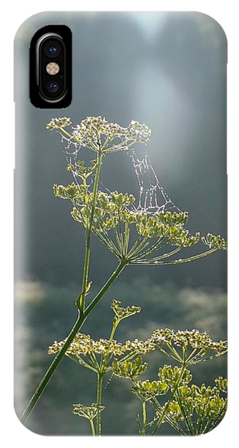 Parsnips IPhone X Case featuring the photograph Parsnip And Pearls by David Addams
