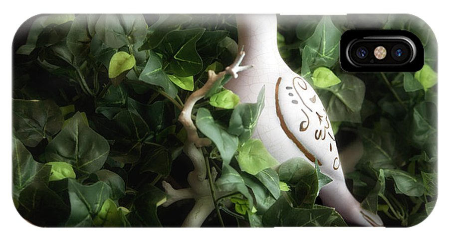 Bird IPhone X Case featuring the photograph Partridge In The Ivy by Tom Mc Nemar