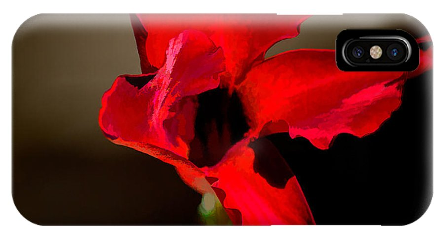 Flowers IPhone X Case featuring the photograph Paso Doble Fire by Margaux Dreamaginations