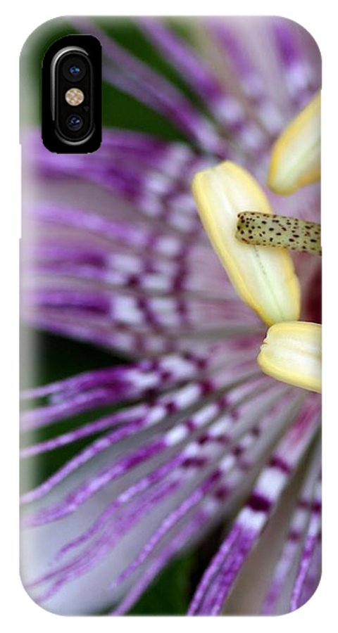 Flower IPhone X / XS Case featuring the photograph Passion Flower by Susan Gibbons