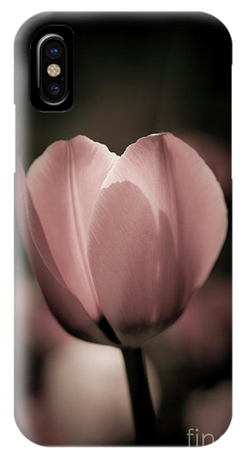 Elegant IPhone X Case featuring the photograph Pastel Pink Tulip In Spring by Linda Matlow