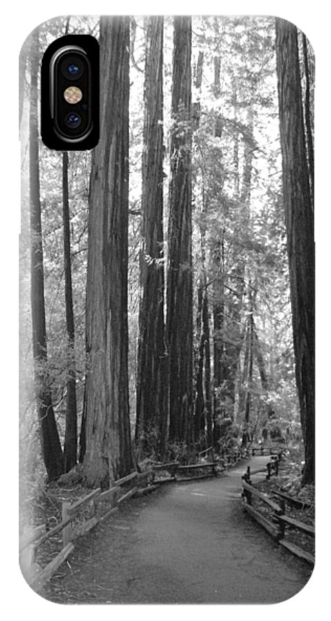Muir IPhone X Case featuring the photograph Pathway Through The Trees by Bradley Bennett