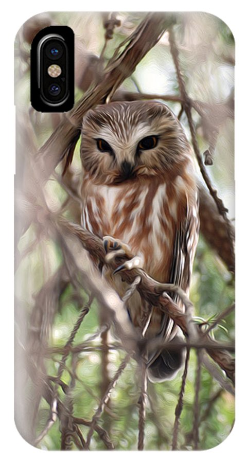 Northern Saw-whet Owl IPhone X Case featuring the photograph Patiently Watching by Tracy Winter
