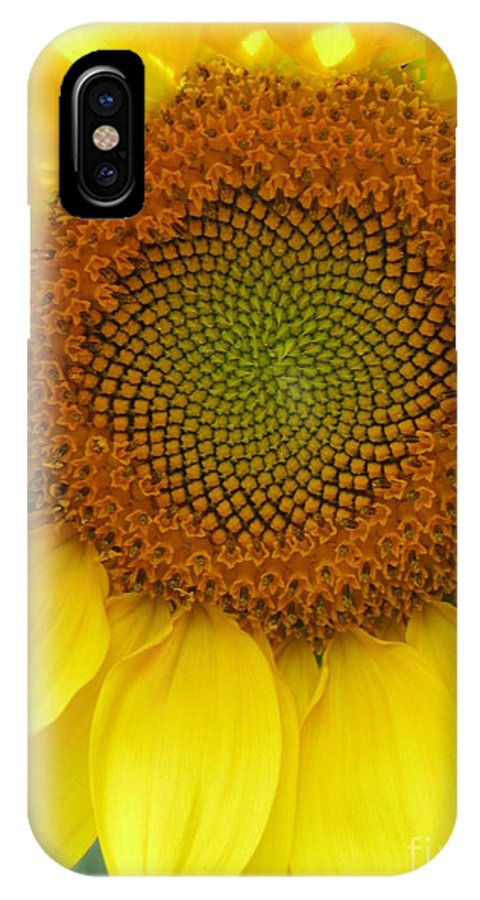 Sunflower IPhone X Case featuring the photograph Patterns Of Nature by Laura Corebello