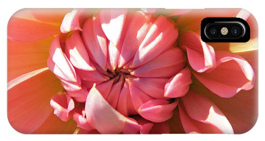 Nature IPhone X Case featuring the photograph Peachy Kiss by Tikvah's Hope