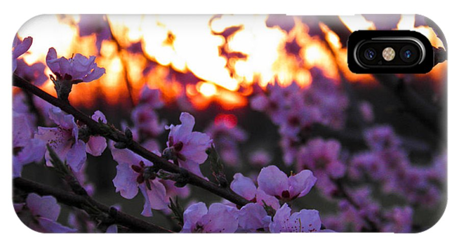 Peach IPhone X Case featuring the photograph Peachy Sunset 3 by Nick Kirby