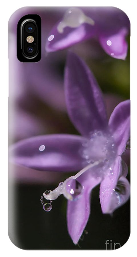 Flower IPhone X Case featuring the photograph Pearls by Ben Dickmann