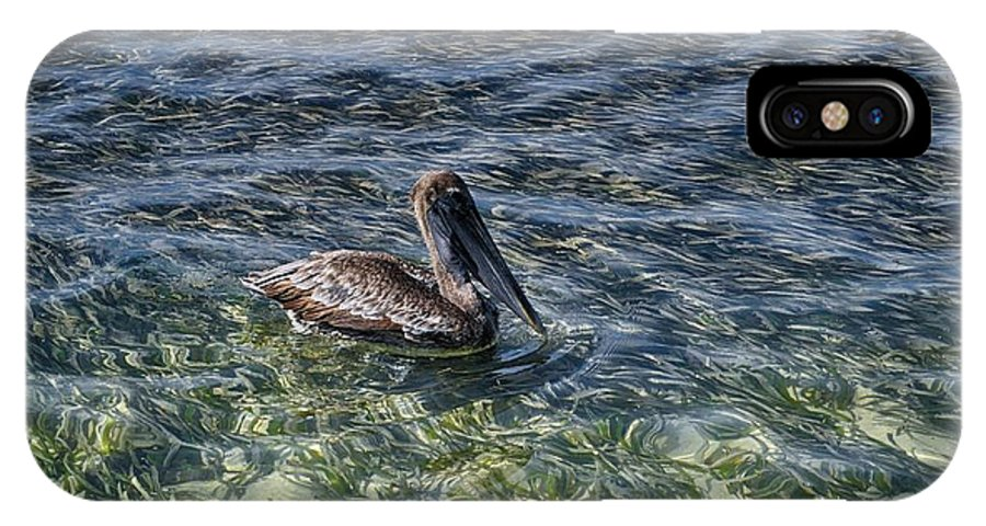 Pelican Photograph IPhone X Case featuring the photograph Pelican Floater by Kristina Deane