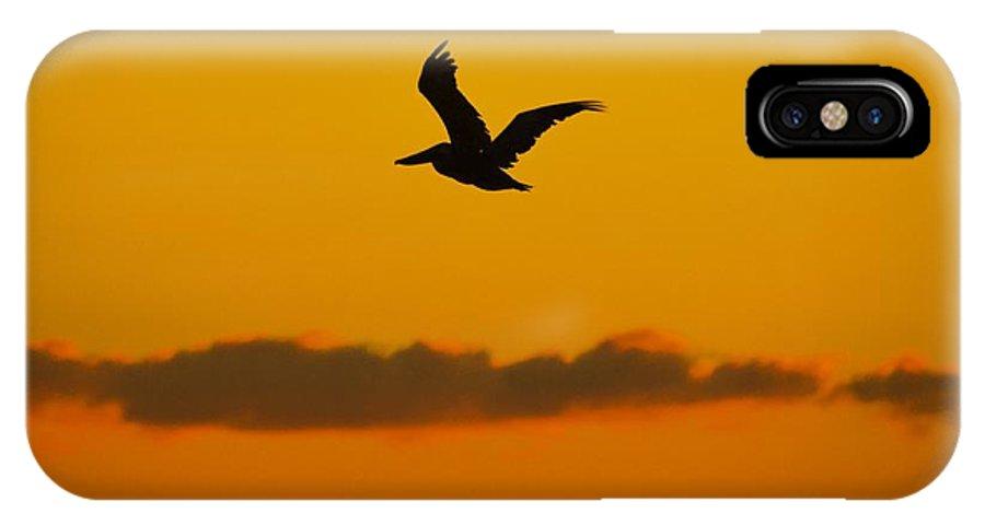 IPhone X Case featuring the photograph Pelican In Flight by Ricardo J Ruiz de Porras