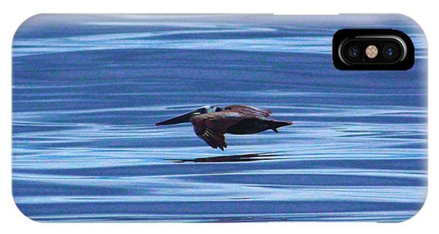 Wildlife IPhone X Case featuring the photograph Pelican In Flight by Steven Baier
