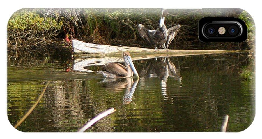 Pelican IPhone X Case featuring the photograph Pelican Temper by Mechala Matthews