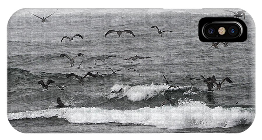 Pelicans Lunching At Ft. Stevens Oregon IPhone X Case featuring the photograph Pelicans Lunching At Ft. Stevens Oregon by Tom Janca