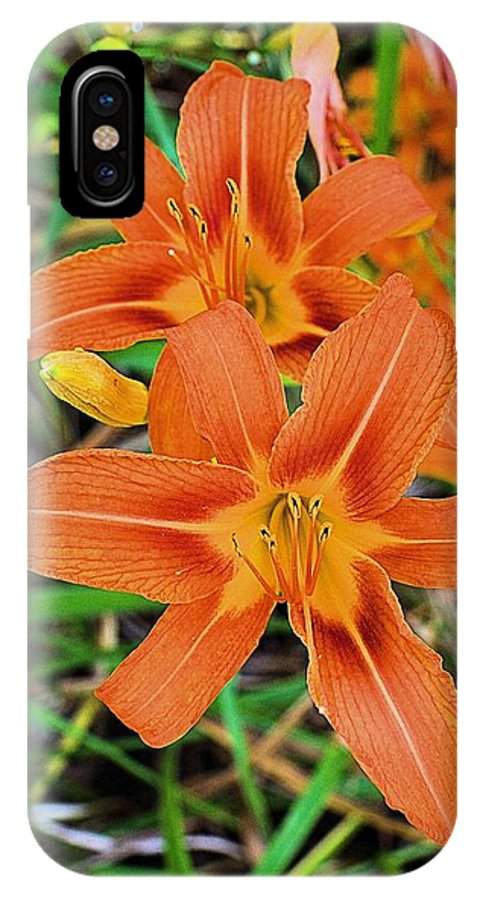 Tiger Lilies IPhone X Case featuring the photograph Pennsylvania Roadside Tiger Lilies by Joel E Blyler