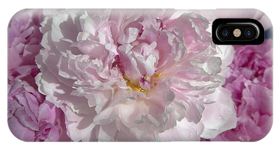 Spring IPhone X Case featuring the photograph Peony 6857 by Terri Winkler