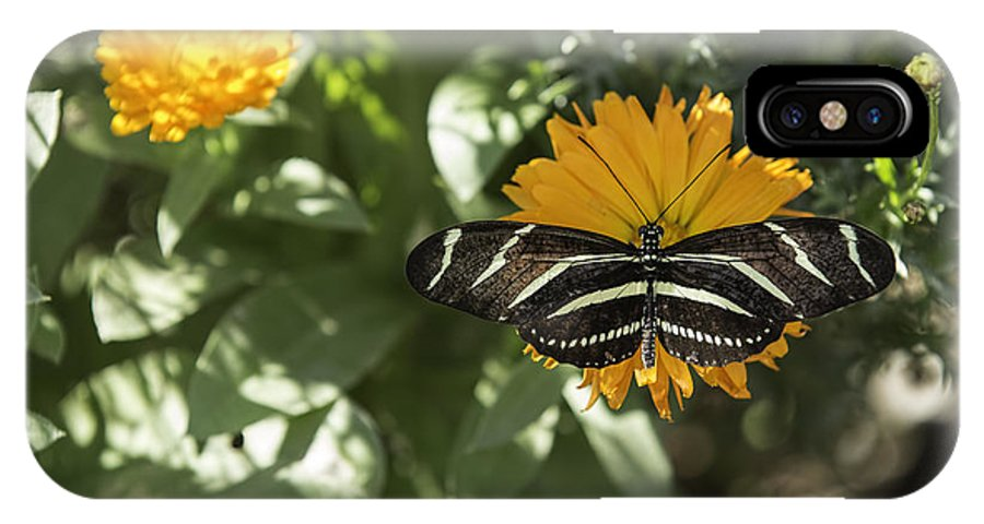 Butterfly IPhone X Case featuring the photograph Perfect Landing by Mark Harrington