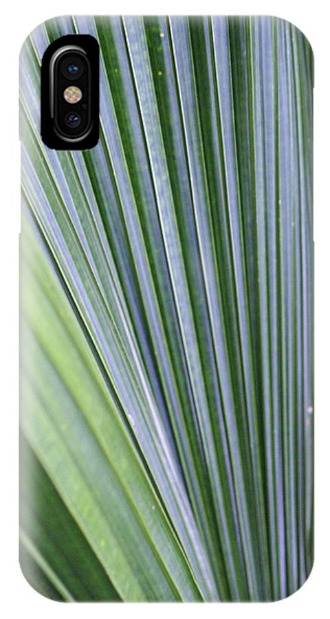Plant IPhone X Case featuring the photograph Perfect Leaf by Lauren Simon