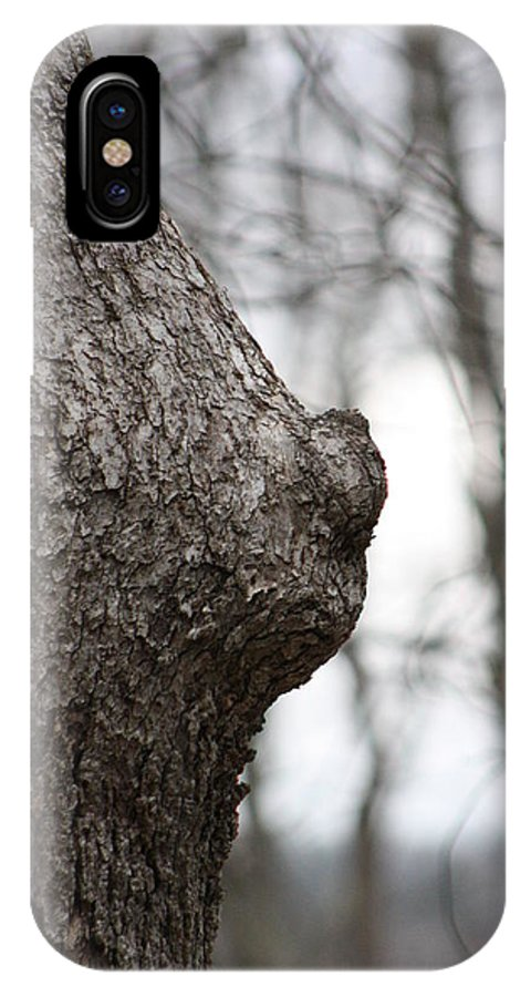 Tree IPhone X Case featuring the photograph Mother Nature by Carmine Taverna