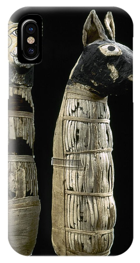 1st Century IPhone X Case featuring the photograph Pet Mummies, 1st Century by Granger