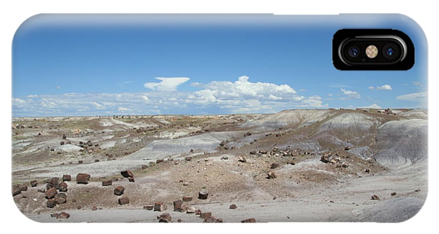 Desert IPhone X Case featuring the photograph Petrified Forest by Susan Herber