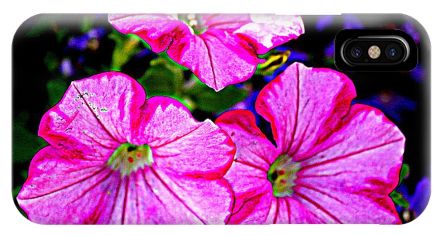 Petunia Rhapsody - Petunias - Florals - Nature - Pink Petunias IPhone X Case featuring the photograph Petunia Rhapsody by Dora Sofia Caputo Photographic Design and Fine Art