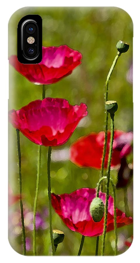 Poppies IPhone X Case featuring the photograph Picture Perfect Too by Rich Franco