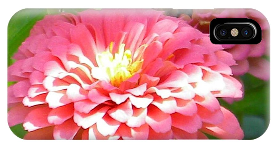IPhone X Case featuring the photograph Pink Blossom by Sara Meche