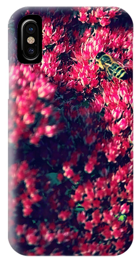 Pink Flowers IPhone X Case featuring the photograph Pink Bumblebee by Danielle Mattson