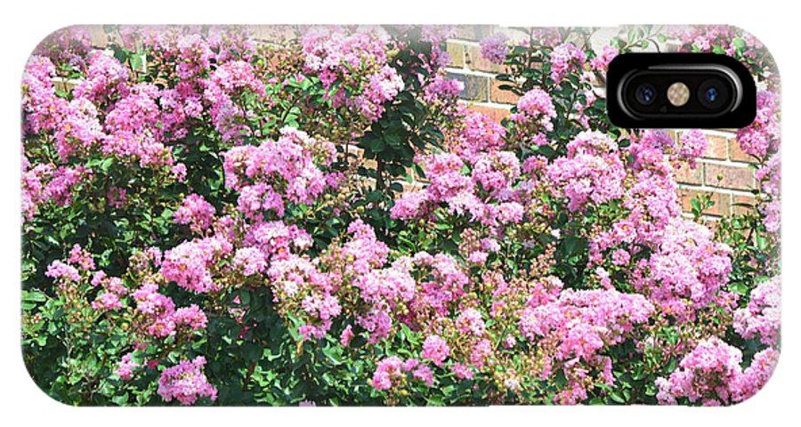 Landscape IPhone X Case featuring the photograph Pink Bush by Kim Stafford