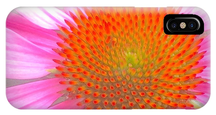 Pink IPhone X Case featuring the photograph Pink Echinacea by Wendy Yee