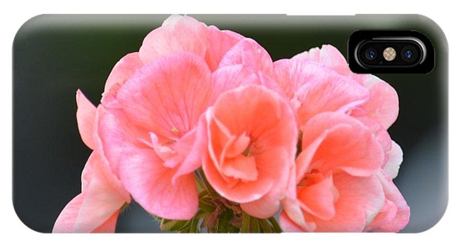 Pink Geranium IPhone X Case featuring the photograph Pink Geranium by Maria Urso