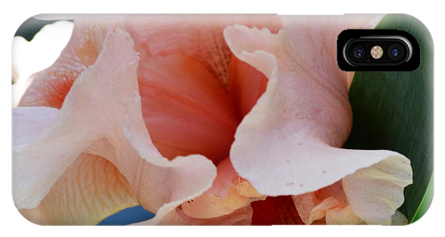 Botanical IPhone X Case featuring the photograph Pink Lady by Eva Thomas