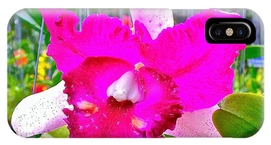 Pink Orchid At Maerim Orchid Farm In Chiang Mai IPhone X Case featuring the photograph Pink Orchid At Maerim Orchid Farm In Chiang Mai-thailand by Ruth Hager