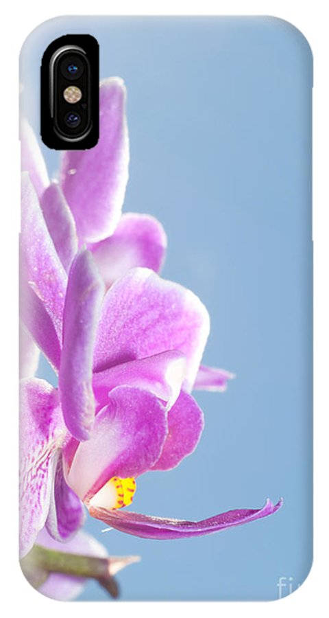 Beautiful IPhone X Case featuring the photograph Pink Orchid Blue Sky by Sari ONeal