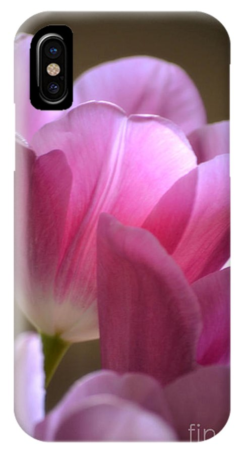 Tulip IPhone X Case featuring the photograph Pink Passion by Deb Halloran