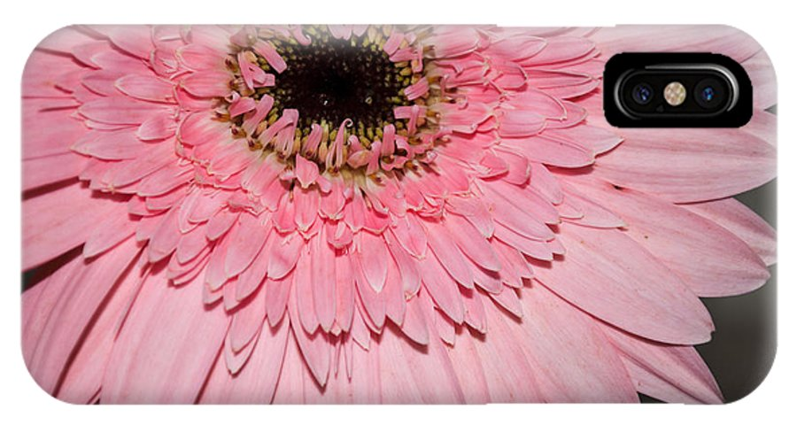 Close Up IPhone X Case featuring the photograph Pink Petals by Jill Mitchell