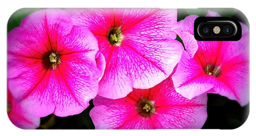 Petunia IPhone X Case featuring the photograph Pink Petunias by Amanda Stadther