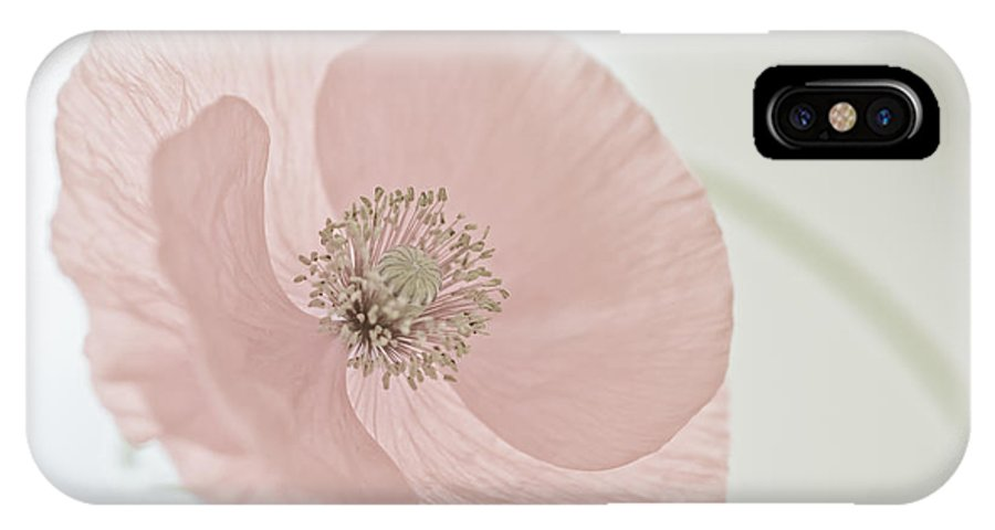 Pink IPhone X Case featuring the photograph Pink Poppy by Maria Heyens